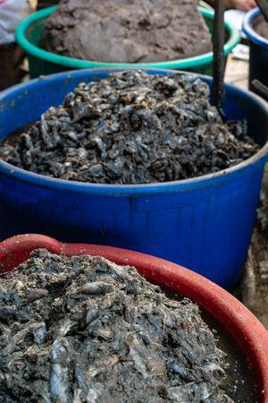 ガピと呼ばれる伝統的な発酵食品