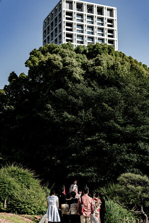 大きな木の前で記念撮影