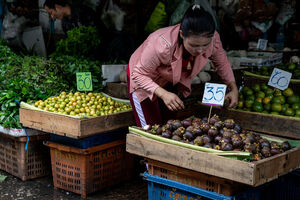 Young woman with a Phra Kruang taking Mangosteen in a fruit store