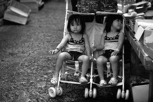 Twins on baby buggy