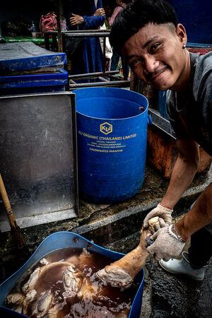 Man washing pig legs in Khlong Toei Market