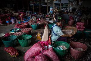 Woman sifting through garlic