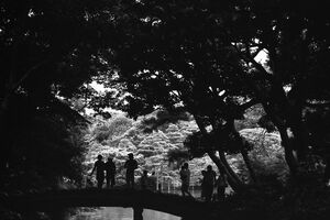 Many silhouettes on bridge in Rikugien garden