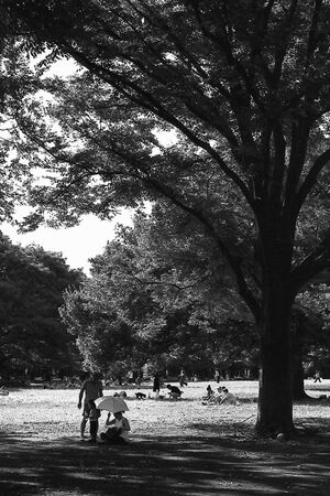 family sitting in the shade in Yoyogi park