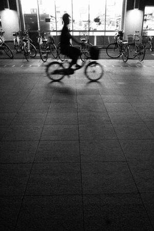 夜道を走る自転車