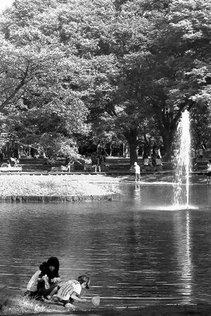 Kids on edge of water in Yoyogi Park
