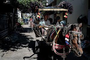 住宅街の中を走る馬車