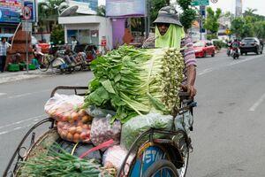 野菜を運ぶベチャ