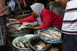 カノマン市場の魚売り