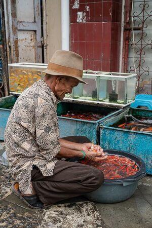 Man Who Loves Goldfish