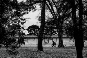 Figures walking through the trees of Kyoto Gyoen