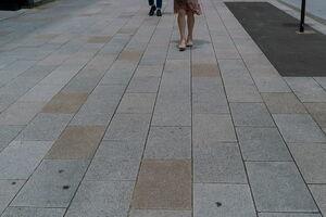 Chuo-dori Avenue of Ginza