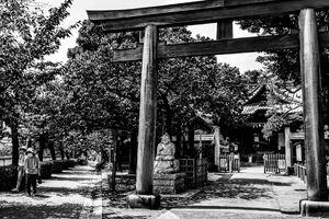 Torii gate of Ebara Jinja
