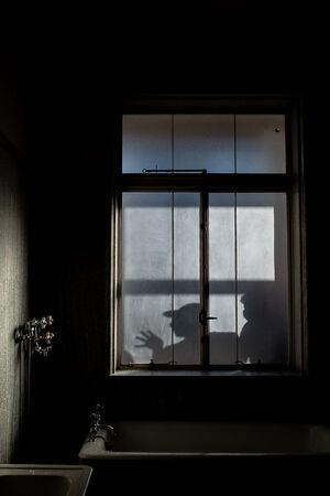 Figures reflected in the bathroom window