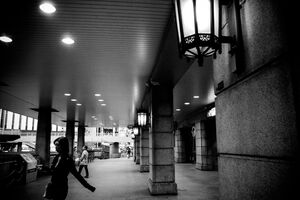 Woman passing between pillars in Ueno station
