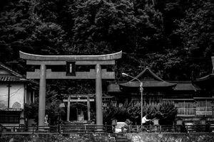 Torii of Sendai-inari Jinja Shrine