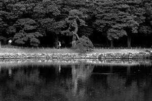 池の向こう岸を歩く人影