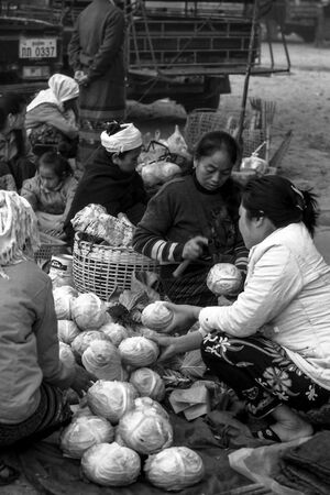 Woman selling cabbage