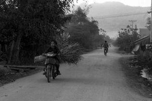 大きな荷を載せて田舎道を走るバイク
