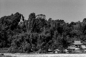 Stupa on leafy hill
