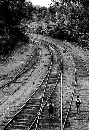 school boys walking on railway track