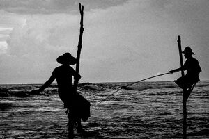 Men doing stilt fishing