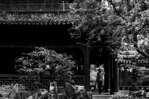 Woman taking a walk in Yuyuan garden