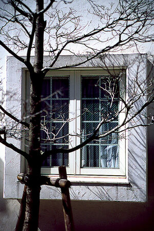 出窓のある家