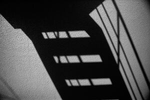 壁に写った影