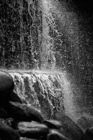 Waterfall In Shinjuku Central Park