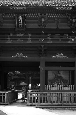 Woman under gate