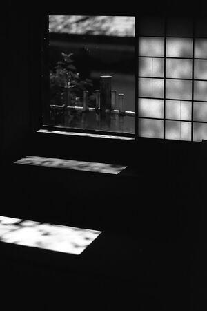 窓から差し込んでくる日差し