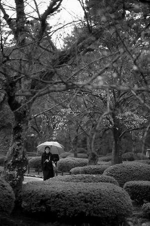 Woman walking in rain