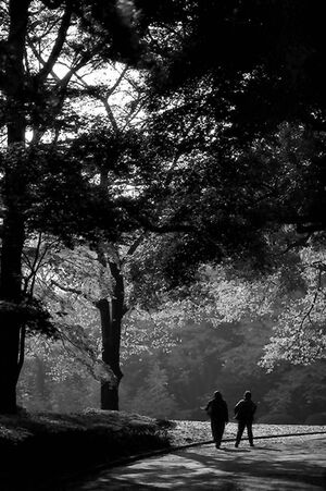 figures walking in Shinjuku Gyoen Park