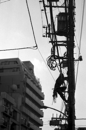 Man on electric pole