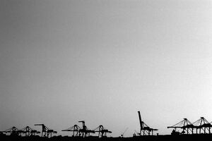 Silhouettes of gantry cranes