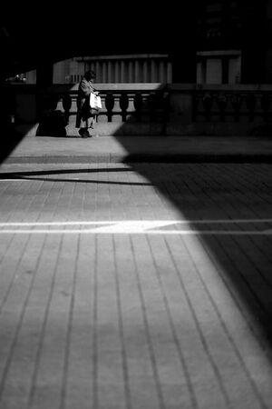 日本橋の上を歩く女性