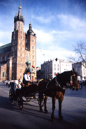 carriage and St. Mary's Basilica