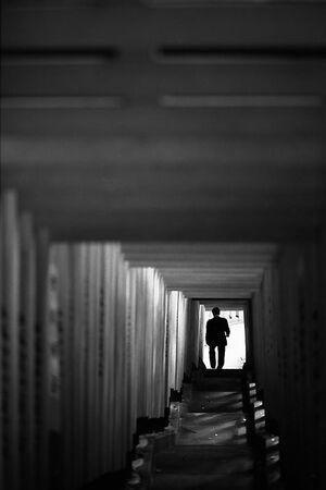 Silhouette descending stairway