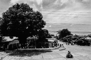 Motorbike running intersection
