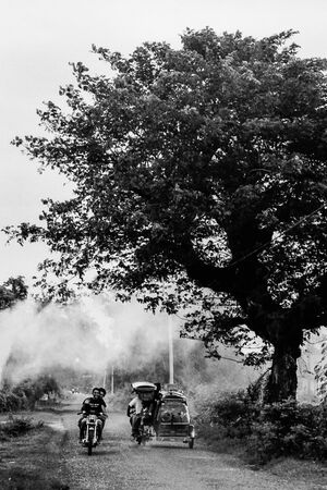 Tricycle and motorbike passing by tall tree