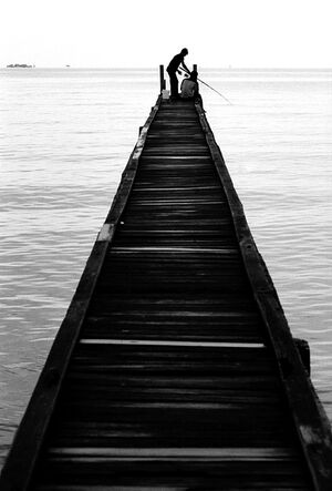 Boys fishing on the edge of pier
