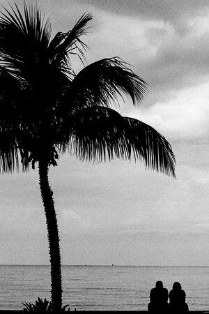 海辺に並んで腰を下ろしていたカップルのシルエット