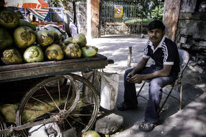 Man selling coconuts by roadside