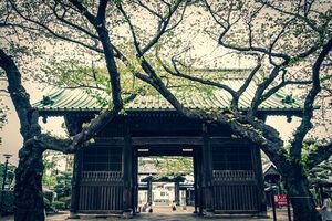 Nio-mon in Yuten-Ji