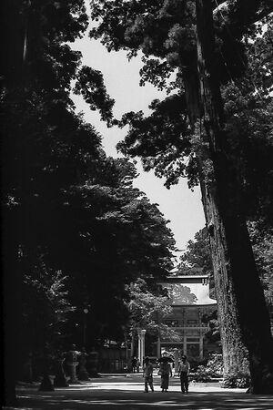 Roh-Mon gate in Kashima Jingu
