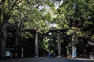 Wooden Torii in Meiji Jingu