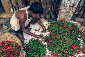Heaps of hot peppers