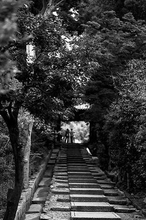 Stairway in Kodai-Ji