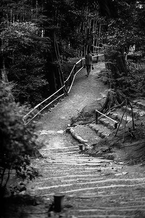 庭園の道を歩く男